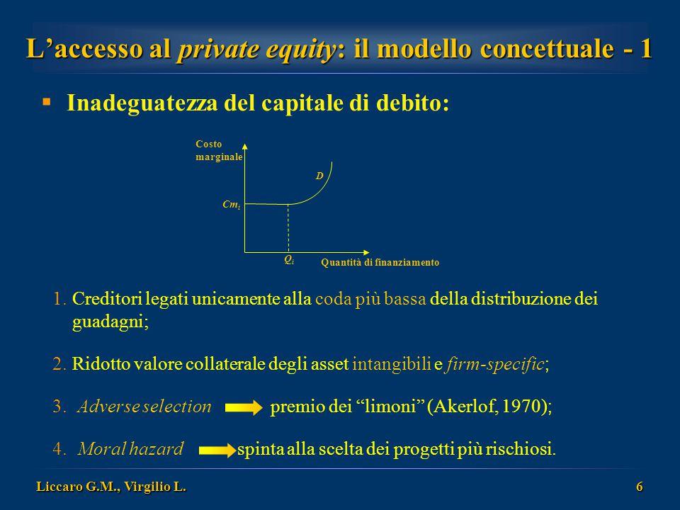 L'accesso al private equity: il modello concettuale - 1