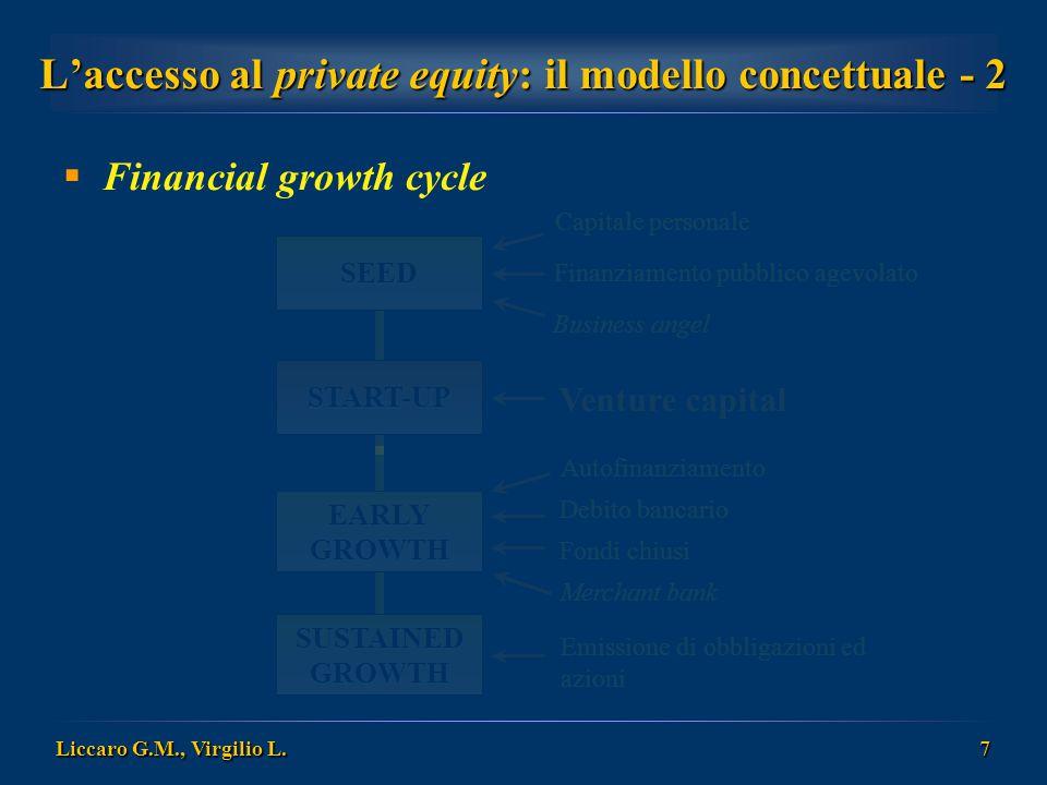L'accesso al private equity: il modello concettuale - 2