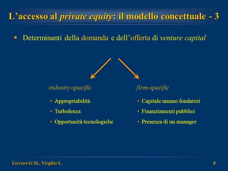 L'accesso al private equity: il modello concettuale - 3