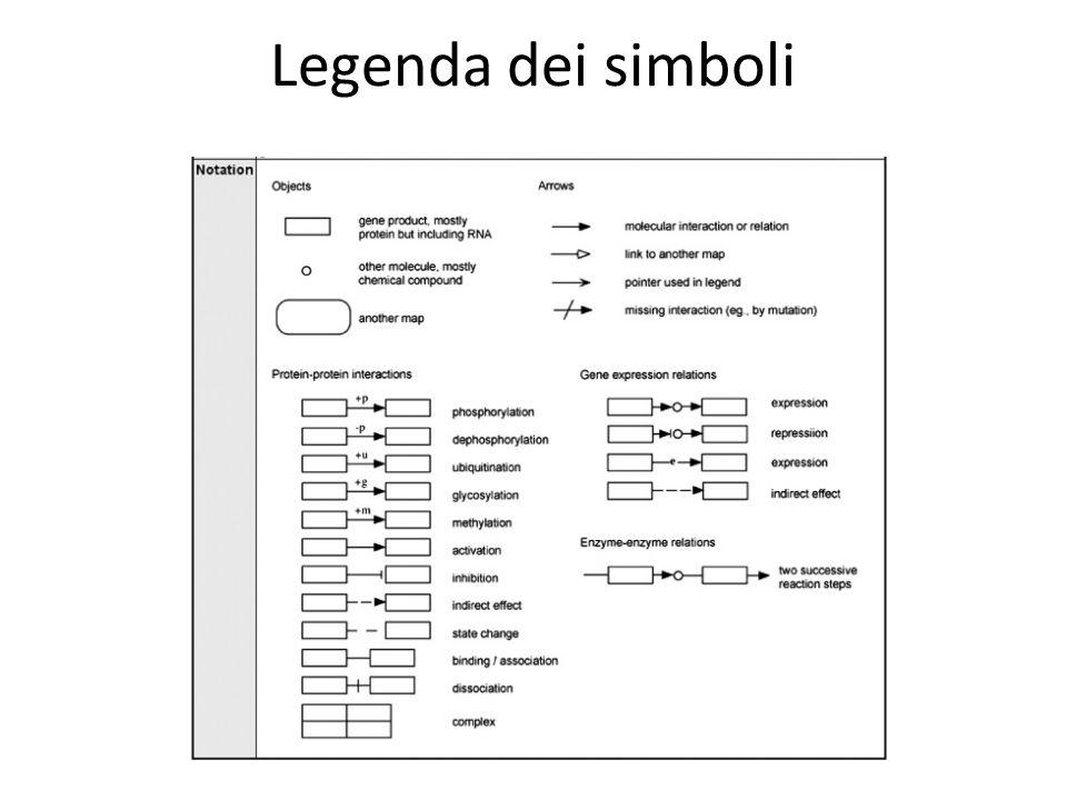 Legenda dei simboli