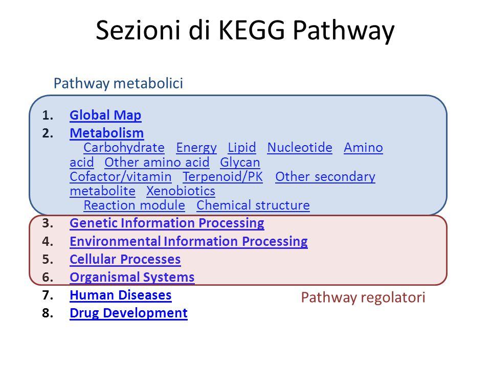 Sezioni di KEGG Pathway