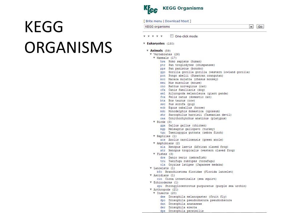 KEGG ORGANISMS