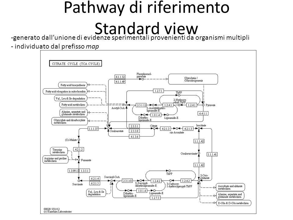 Pathway di riferimento Standard view