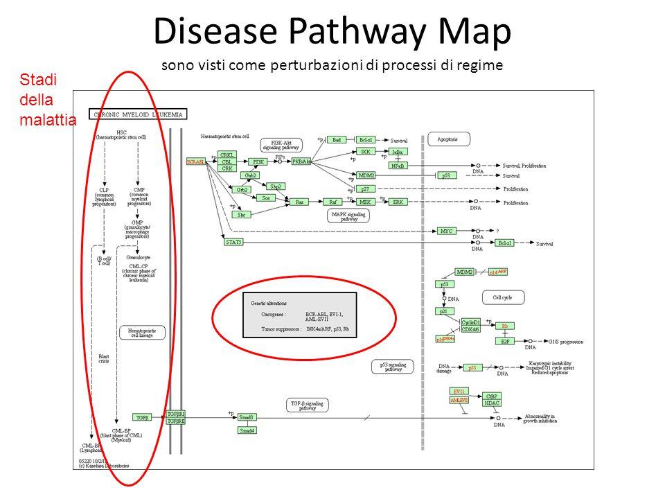 Disease Pathway Map sono visti come perturbazioni di processi di regime