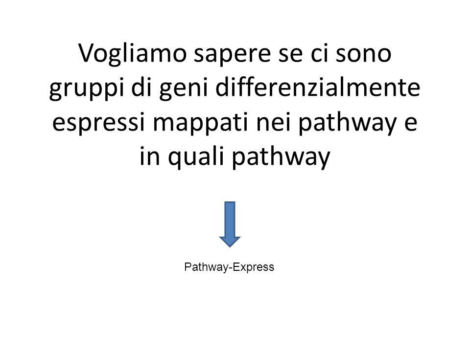 Vogliamo sapere se ci sono gruppi di geni differenzialmente espressi mappati nei pathway e in quali pathway