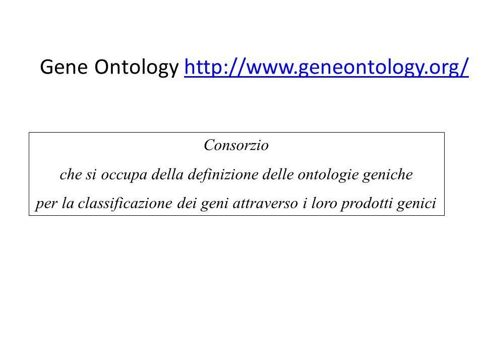 Gene Ontology http://www.geneontology.org/