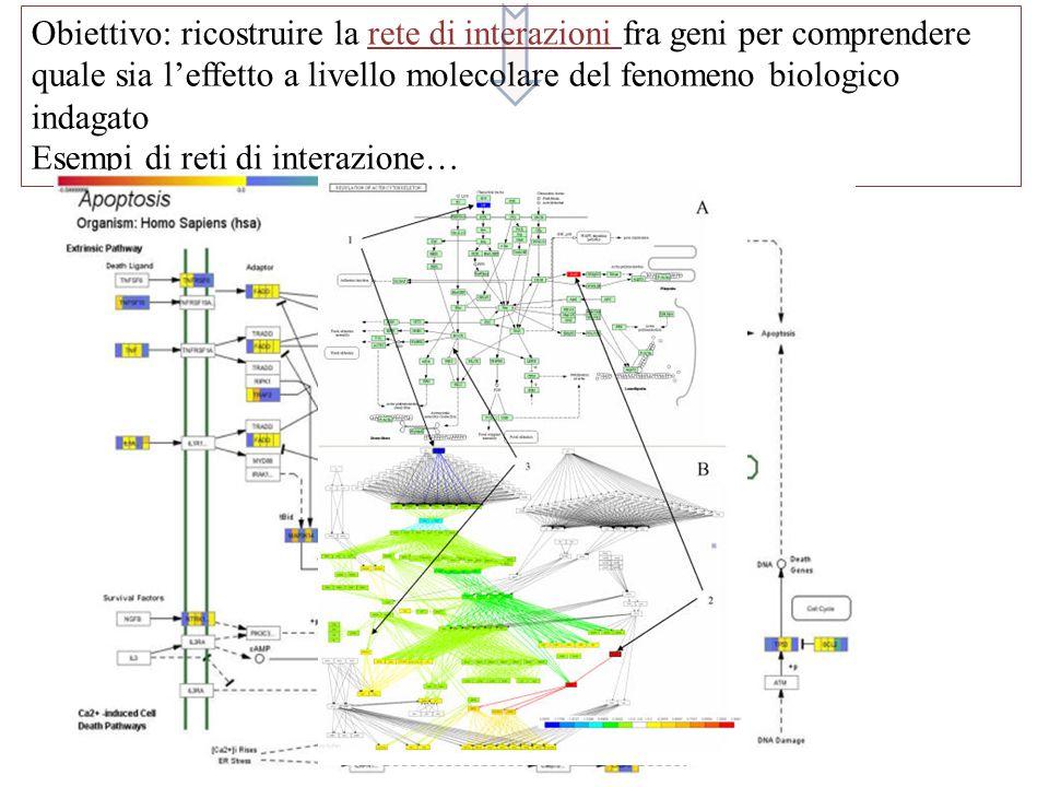 Obiettivo: ricostruire la rete di interazioni fra geni per comprendere quale sia l'effetto a livello molecolare del fenomeno biologico indagato