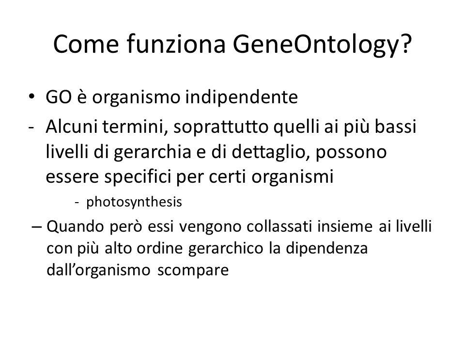 Come funziona GeneOntology