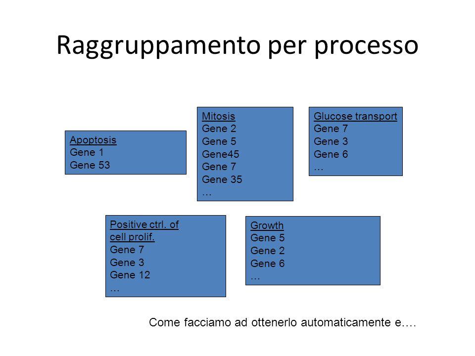 Raggruppamento per processo