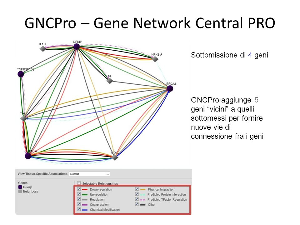 GNCPro – Gene Network Central PRO