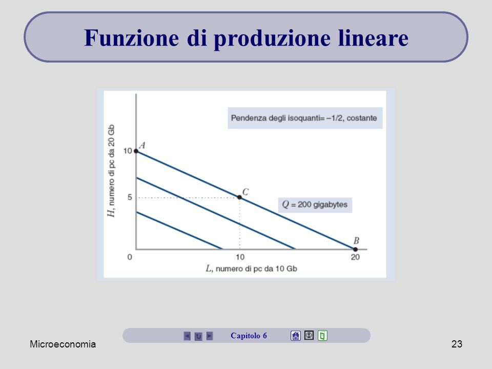 Funzione di produzione lineare