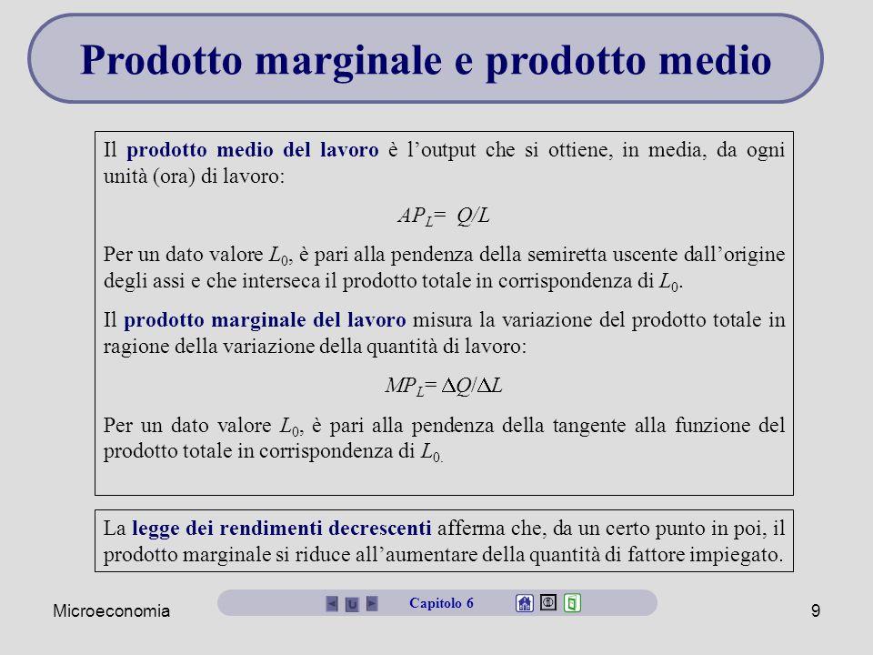 Prodotto marginale e prodotto medio