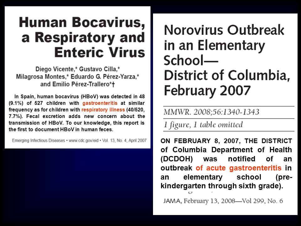 In Spain, human bocavirus (HBoV) was detected in 48 (9