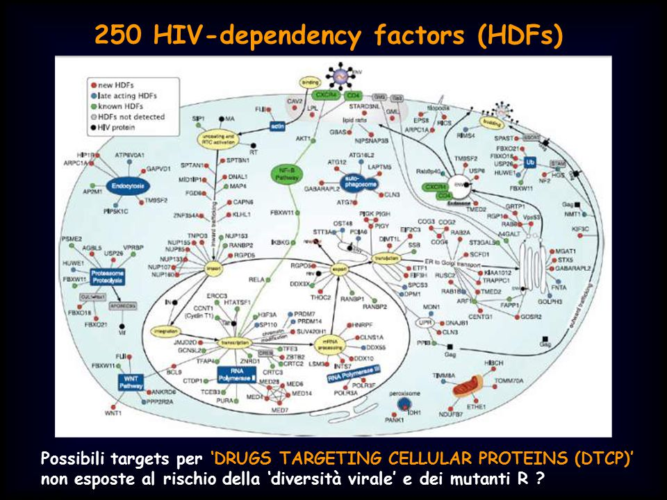 250 HIV-dependency factors (HDFs)