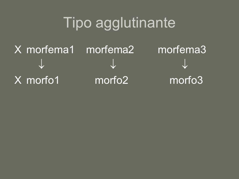 Tipo agglutinante X morfema1 morfema2 morfema3   