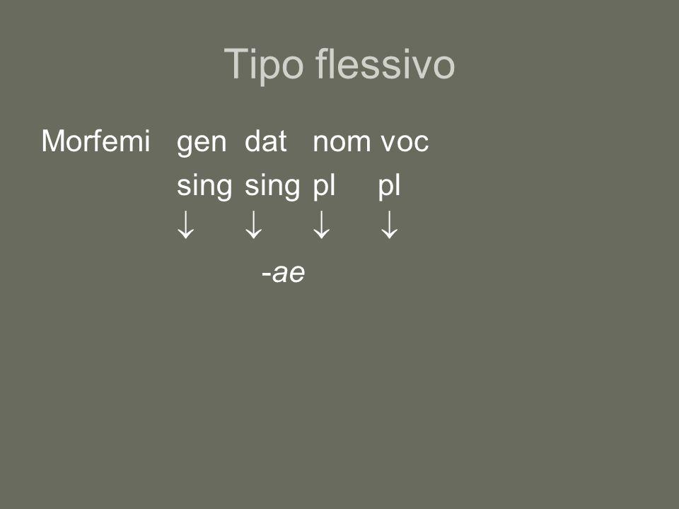 Tipo flessivo Morfemi gen dat nom voc sing sing pl pl     -ae