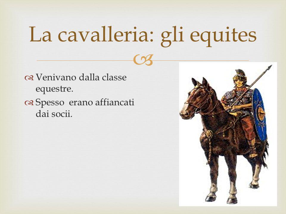 La cavalleria: gli equites