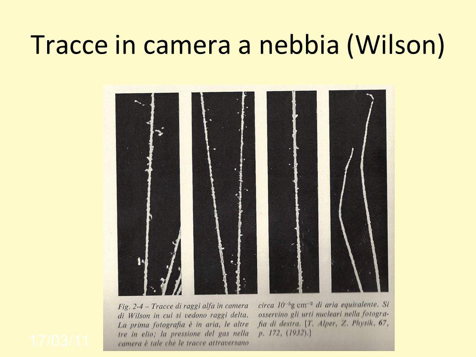 Tracce in camera a nebbia (Wilson)