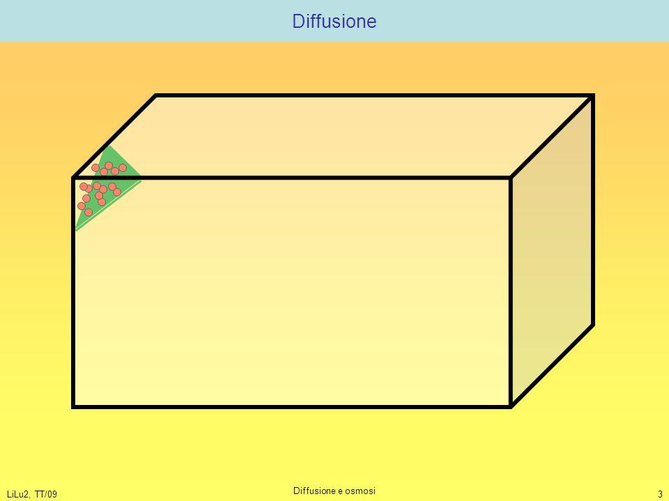 Diffusione LiLu2, TT/09 Diffusione e osmosi