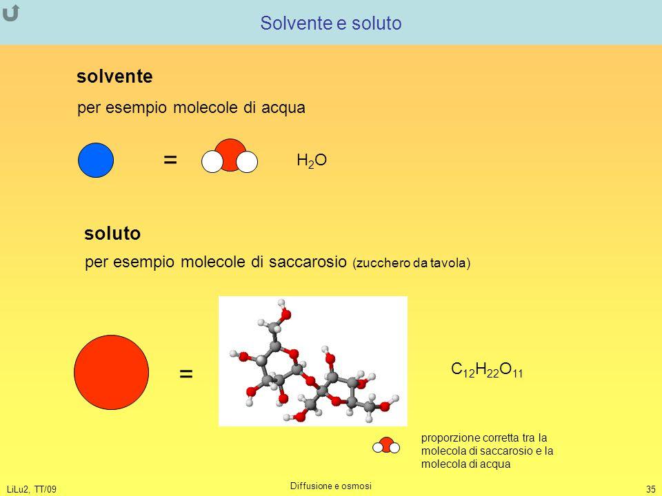 = = Solvente e soluto solvente soluto per esempio molecole di acqua