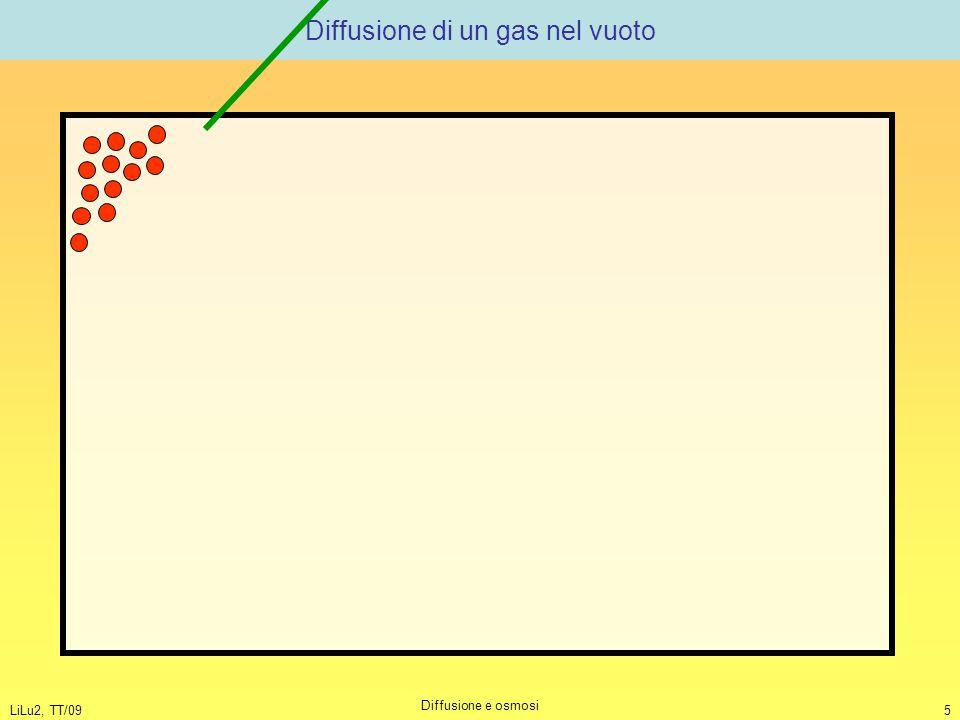 Diffusione di un gas nel vuoto