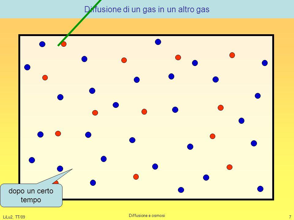 Diffusione di un gas in un altro gas