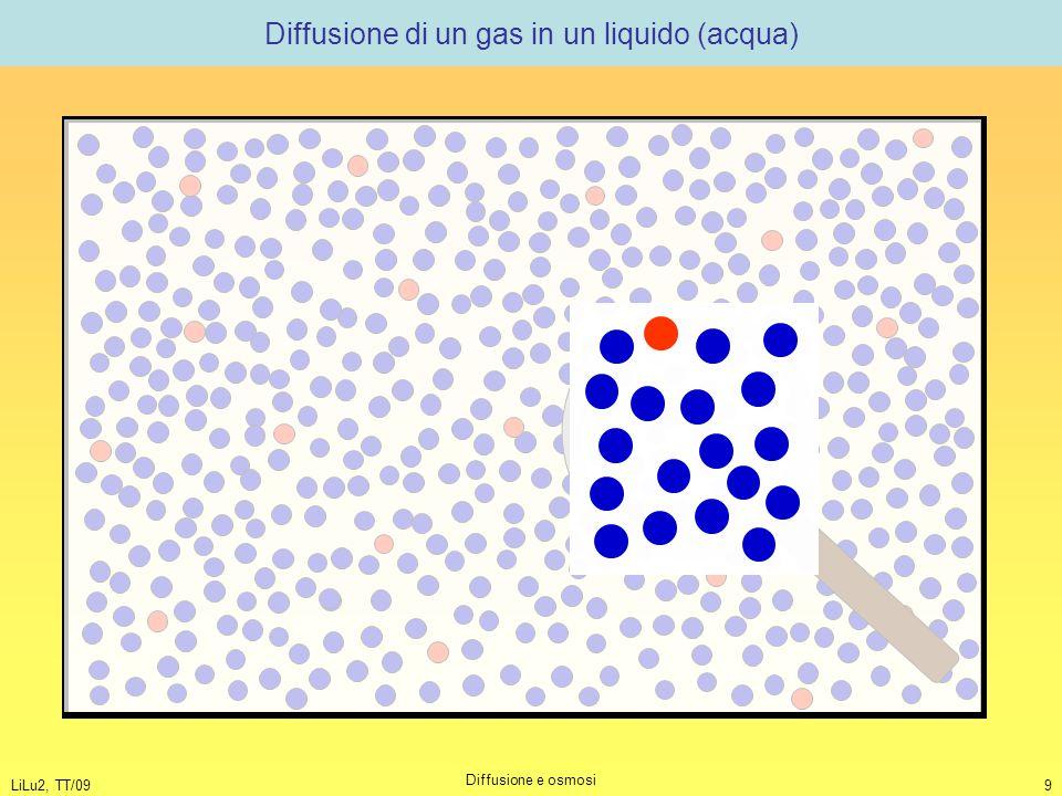 Diffusione di un gas in un liquido (acqua)