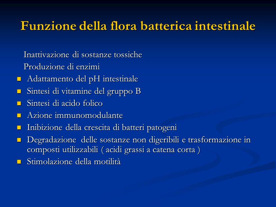 Funzione della flora batterica intestinale