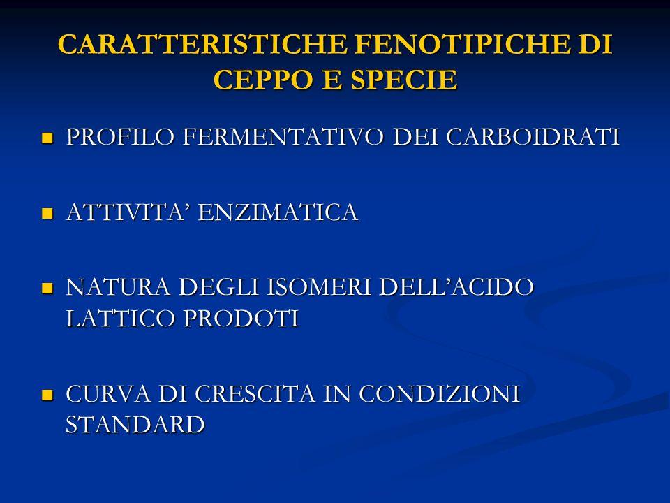 CARATTERISTICHE FENOTIPICHE DI CEPPO E SPECIE