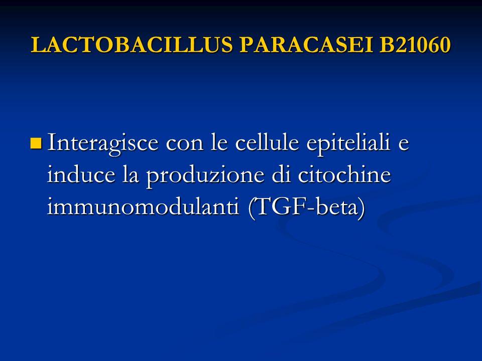 LACTOBACILLUS PARACASEI B21060