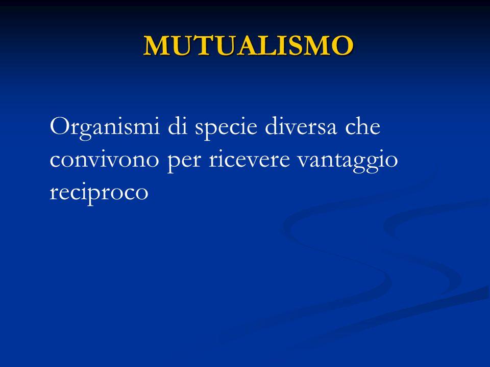 MUTUALISMO Organismi di specie diversa che convivono per ricevere vantaggio reciproco