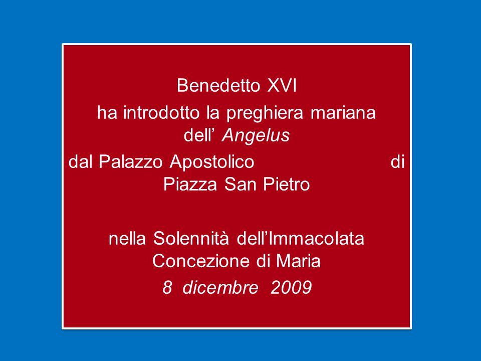 Benedetto XVI ha introdotto la preghiera mariana dell' Angelus dal Palazzo Apostolico di Piazza San Pietro nella Solennità dell'Immacolata Concezione di Maria 8 dicembre 2009