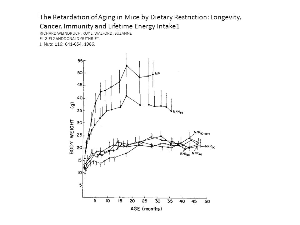 The Retardation of Aging in Mice by Dietary Restriction: Longevity, Cancer, Immunity and Lifetime Energy Intake1