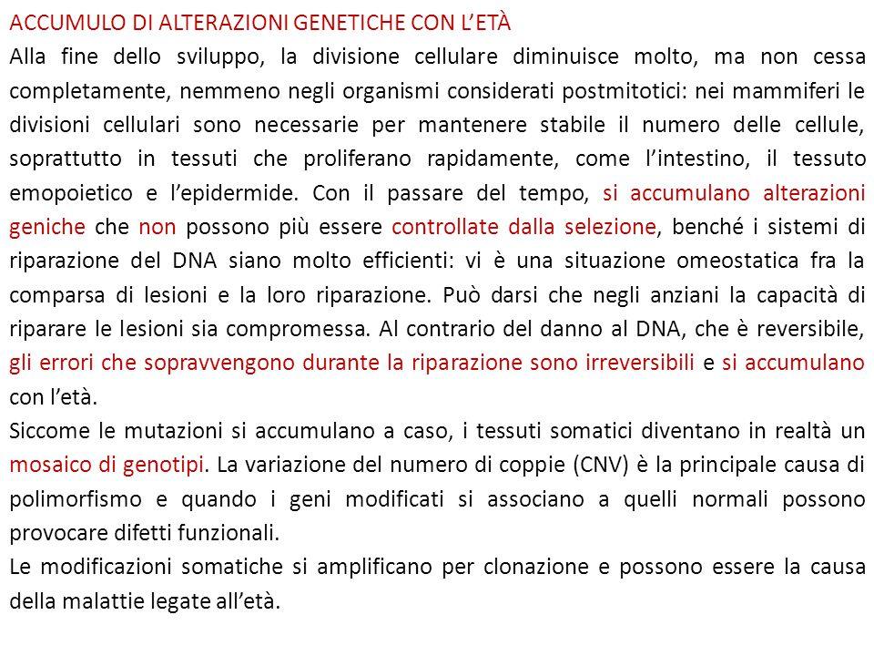 ACCUMULO DI ALTERAZIONI GENETICHE CON L'ETÀ