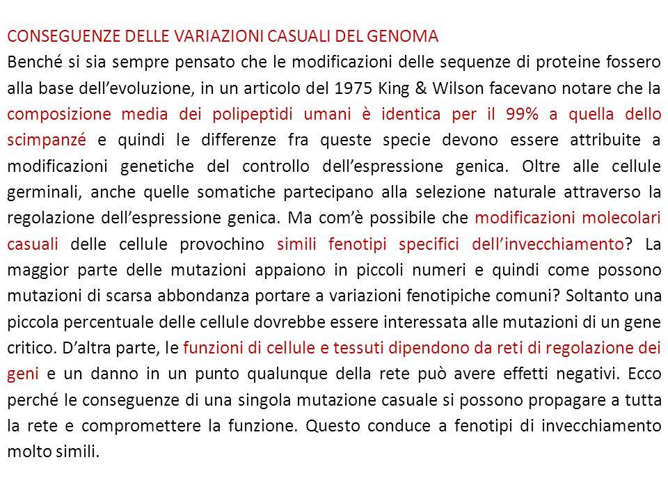 CONSEGUENZE DELLE VARIAZIONI CASUALI DEL GENOMA