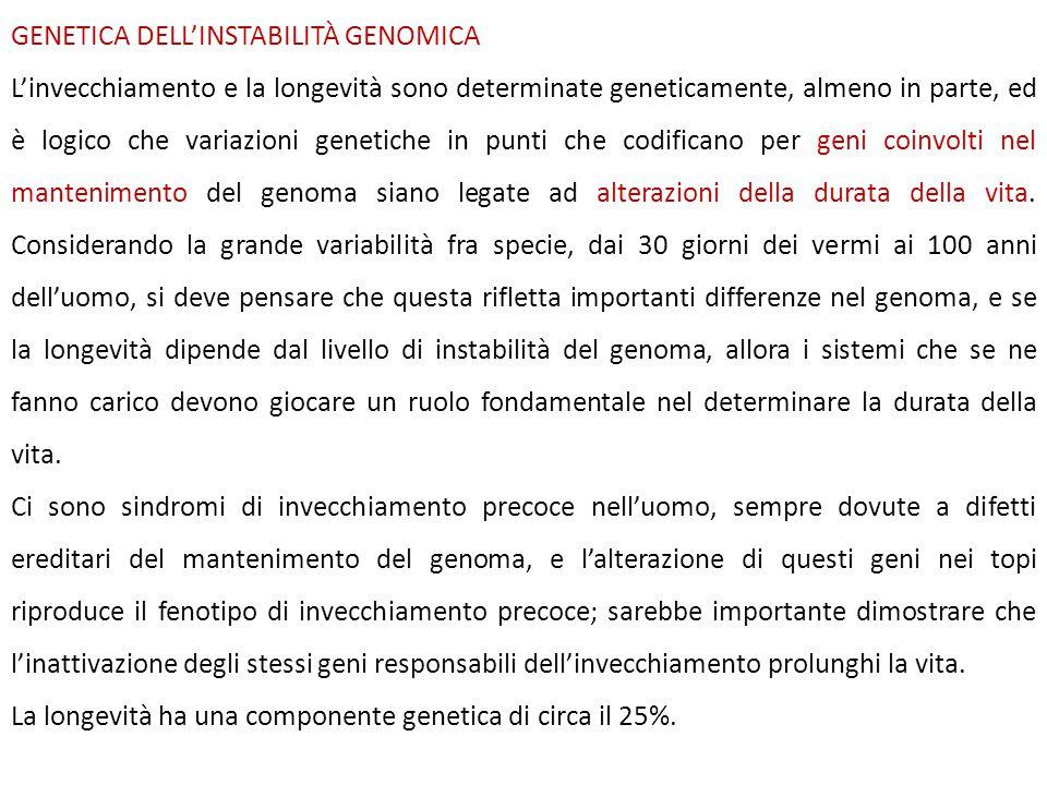 GENETICA DELL'INSTABILITÀ GENOMICA