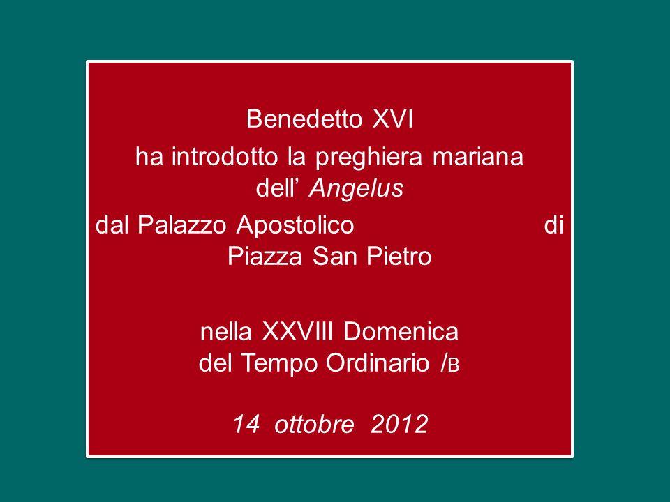 Benedetto XVI ha introdotto la preghiera mariana dell' Angelus dal Palazzo Apostolico di Piazza San Pietro nella XXVIII Domenica del Tempo Ordinario /B 14 ottobre 2012