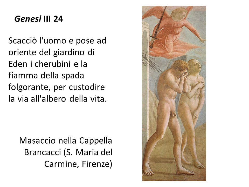 Genesi III 24
