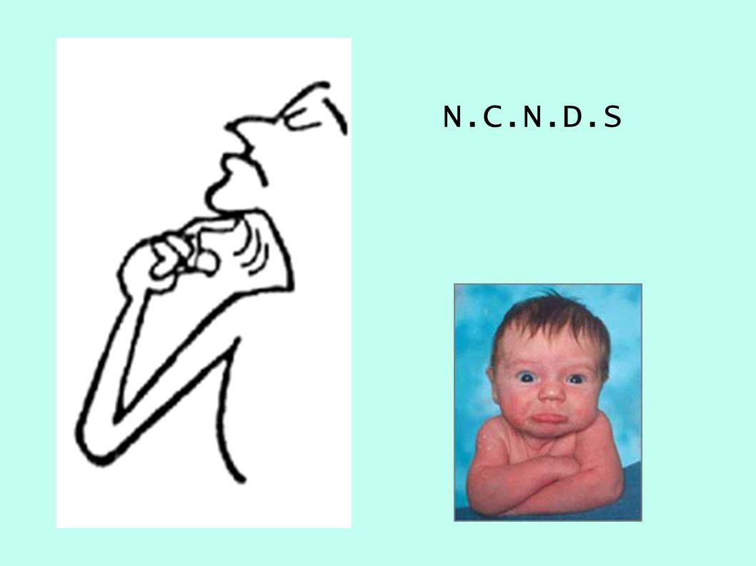 N.C.N.D.S 26