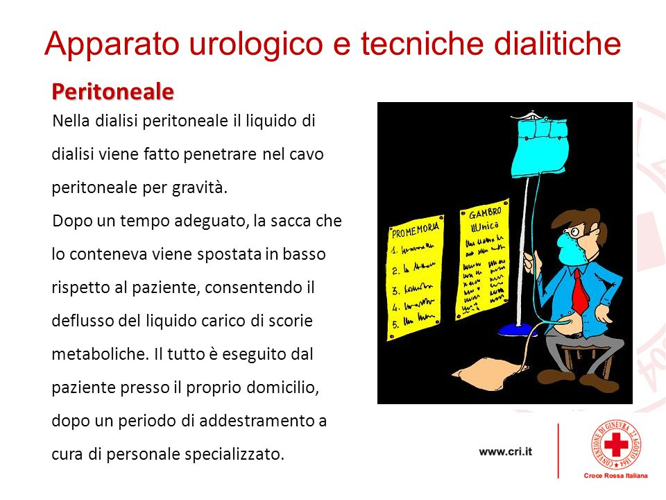 Apparato urologico e tecniche dialitiche