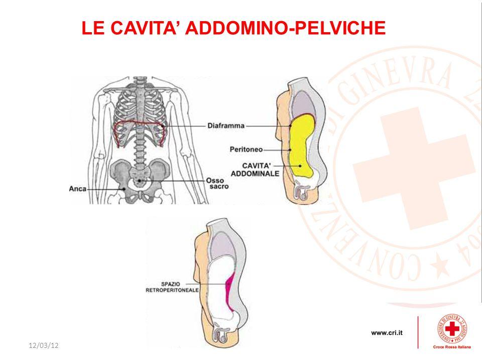 LE CAVITA' ADDOMINO-PELVICHE