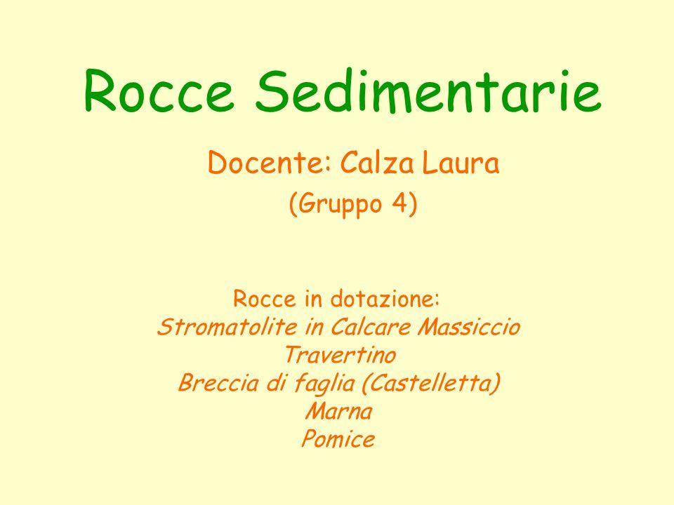 Rocce Sedimentarie Docente: Calza Laura (Gruppo 4) Rocce in dotazione:
