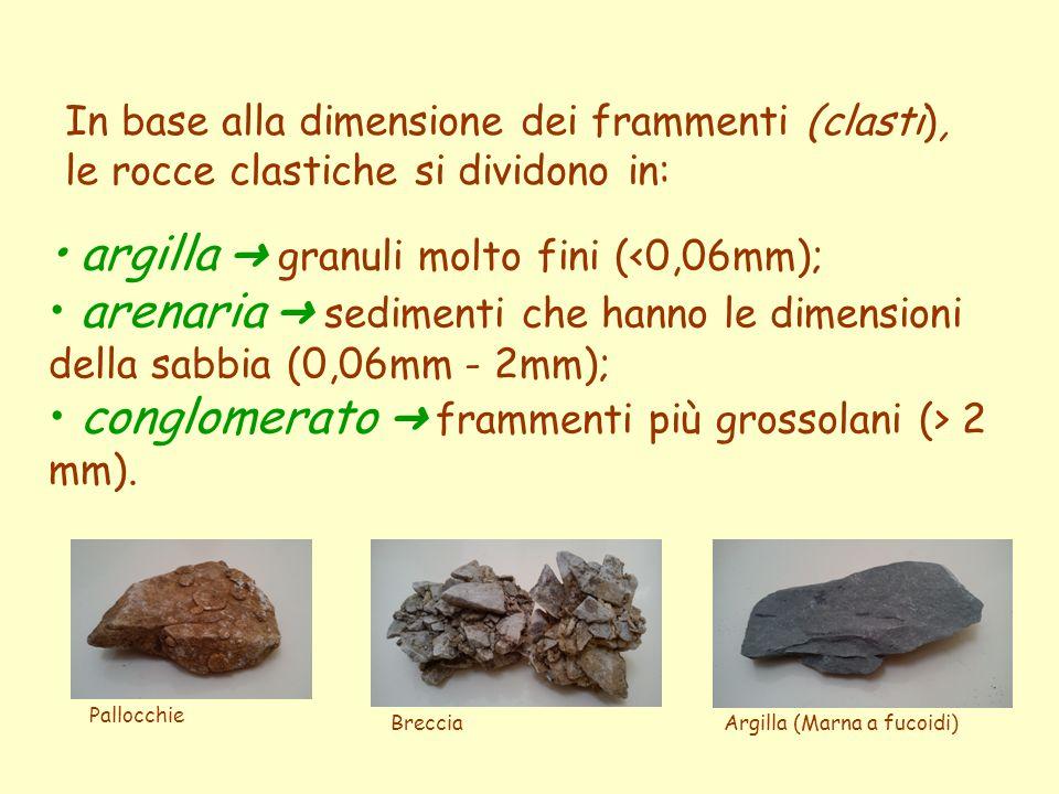 In base alla dimensione dei frammenti (clasti), le rocce clastiche si dividono in: