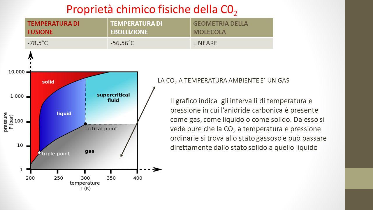 Proprietà chimico fisiche della C02