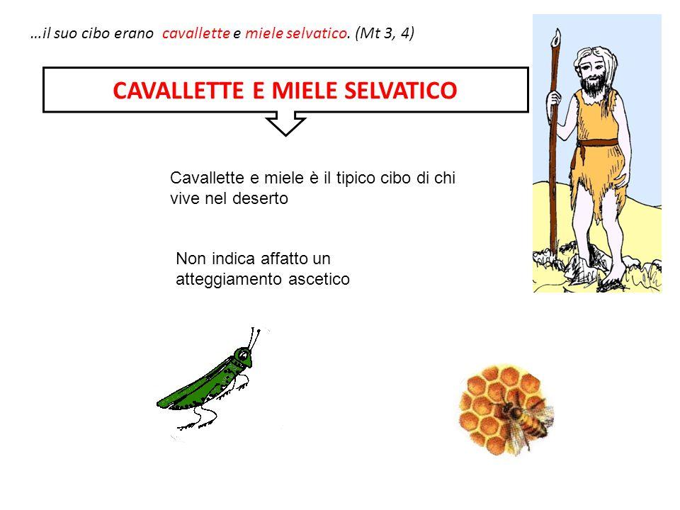 CAVALLETTE E MIELE SELVATICO