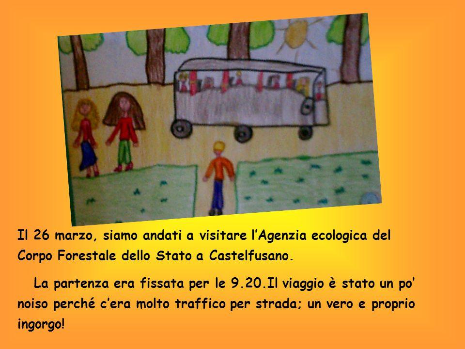 Il 26 marzo, siamo andati a visitare l'Agenzia ecologica del Corpo Forestale dello Stato a Castelfusano.