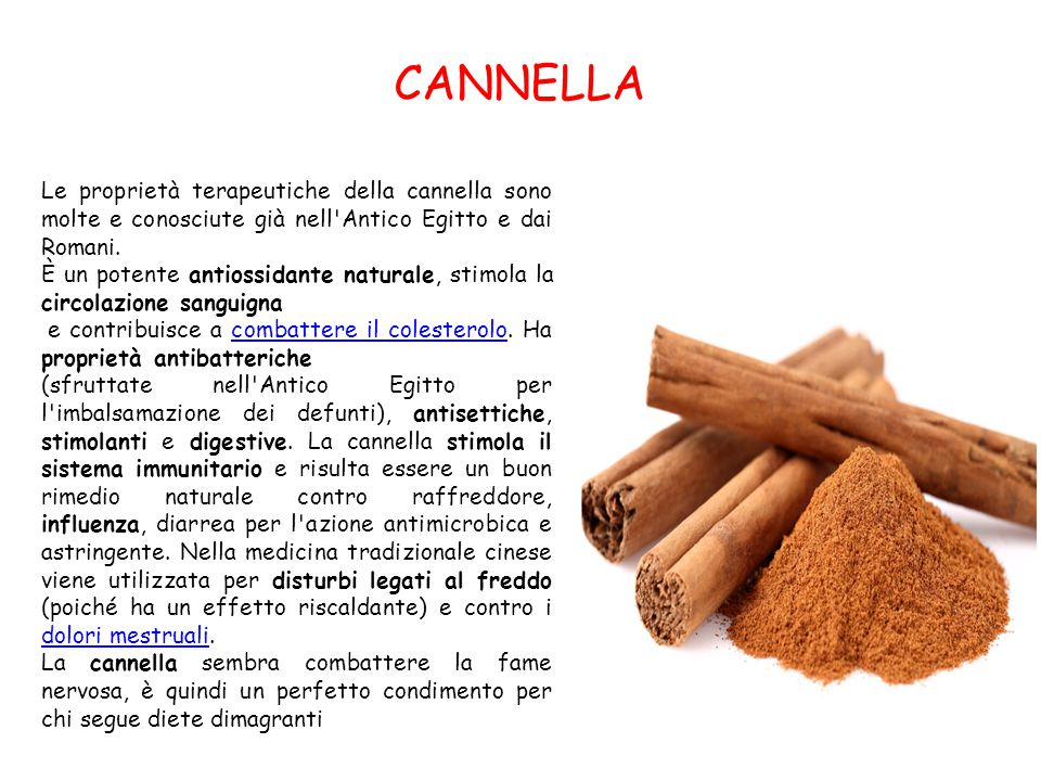 CANNELLA Le proprietà terapeutiche della cannella sono molte e conosciute già nell Antico Egitto e dai Romani.