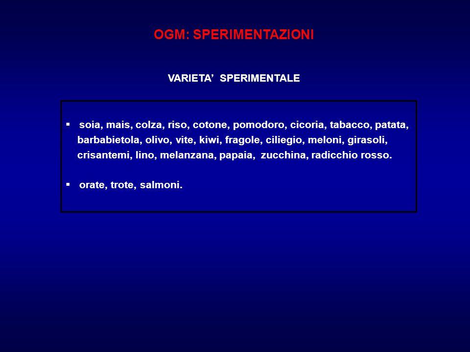 OGM: SPERIMENTAZIONI VARIETA' SPERIMENTALE. soia, mais, colza, riso, cotone, pomodoro, cicoria, tabacco, patata,