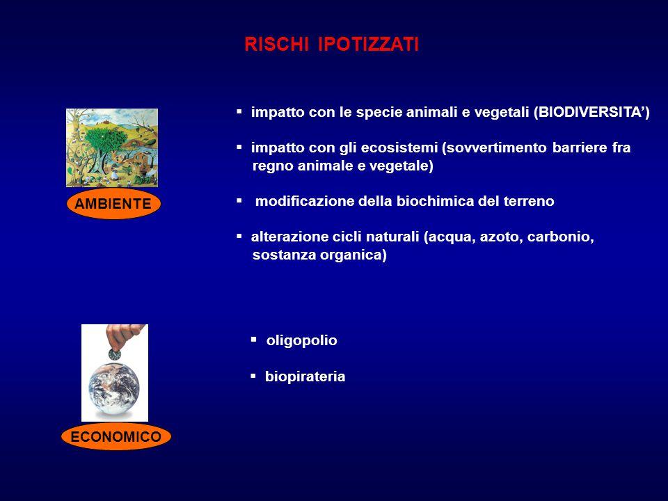 RISCHI IPOTIZZATI oligopolio