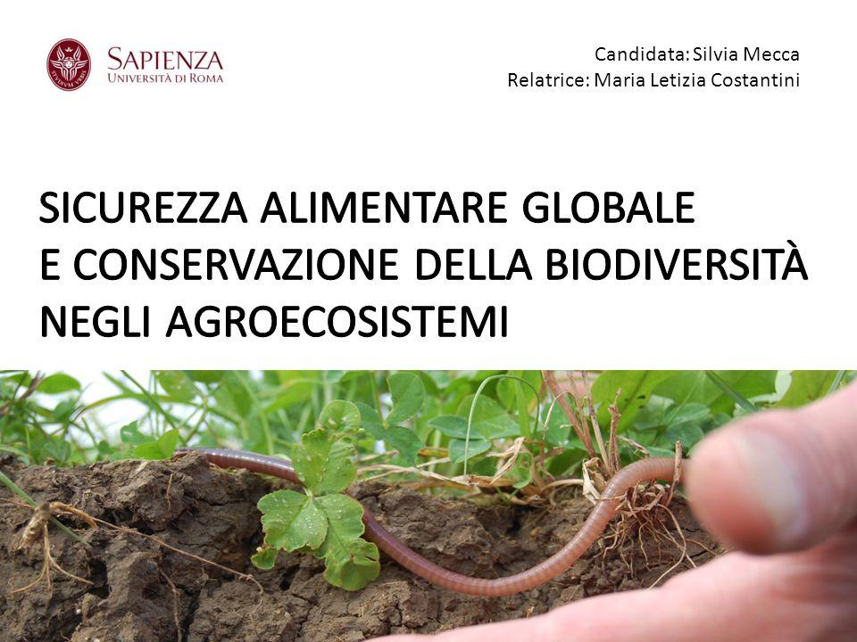 Candidata: Silvia Mecca Relatrice: Maria Letizia Costantini